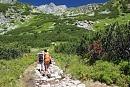 Bukovina - chalupa pronájem